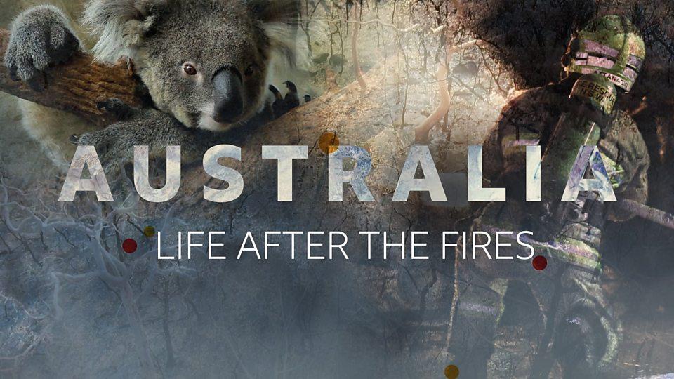 Newsround Special: Australia - La vida después de los incendios