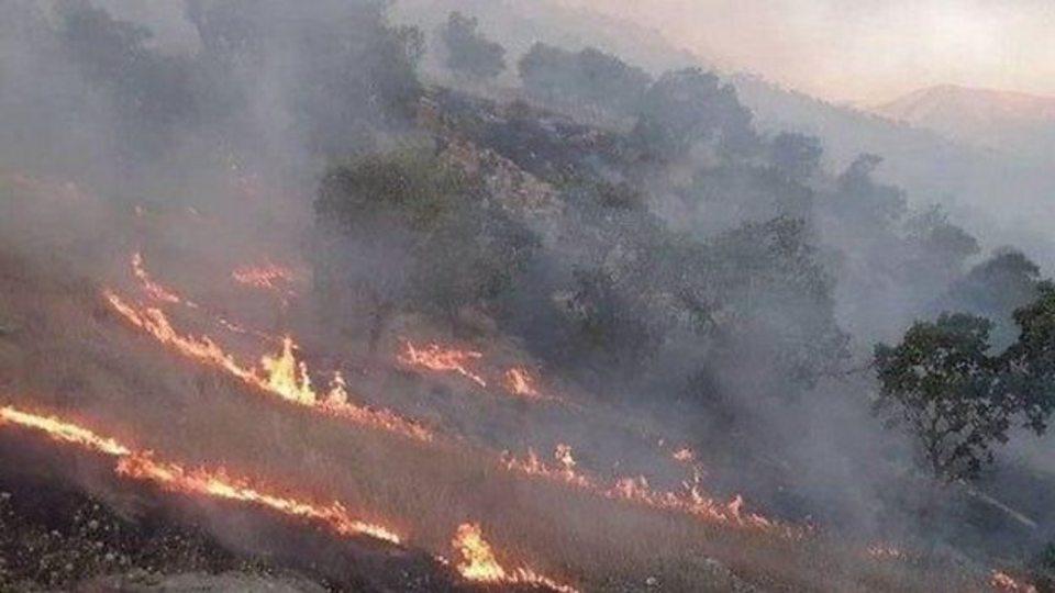 آتشسوزی در جنگلهای خائیز شهرستان کهگیلویه