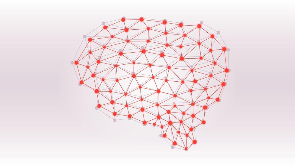 Brain Diagram Quiz | Bbc Radio 4 Brain Of Britain The Brain Of Britain Quiz 3