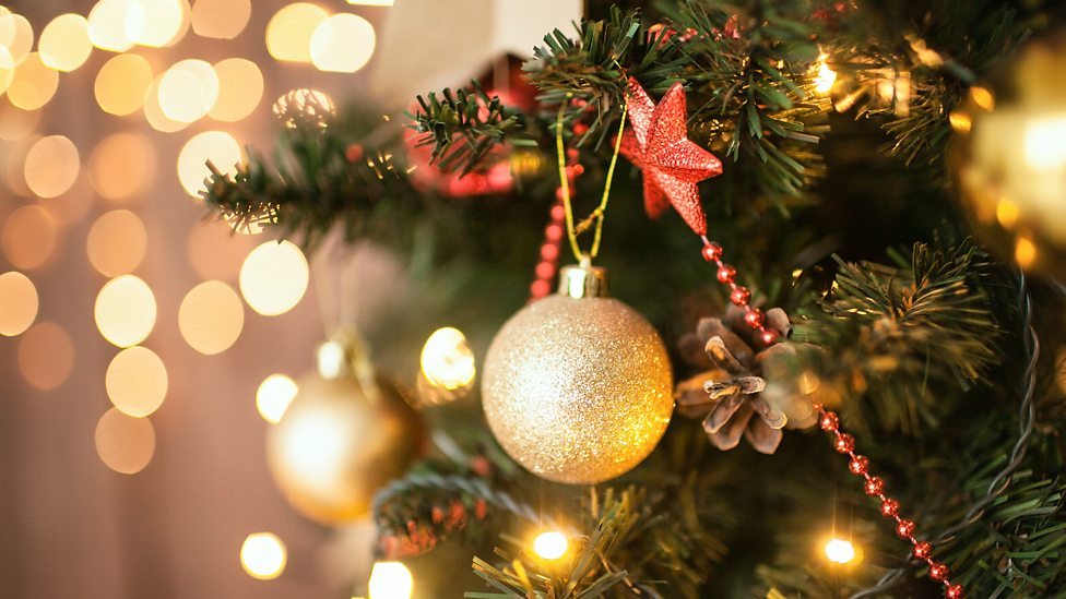 bbc radio 4 world at one when is it too early to put up your christmas tree - When Do You Put Up Your Christmas Tree