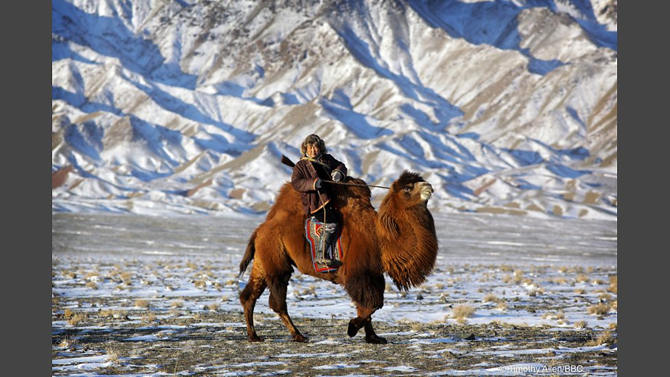 bbc one human planet deserts gobi desert mongolia human