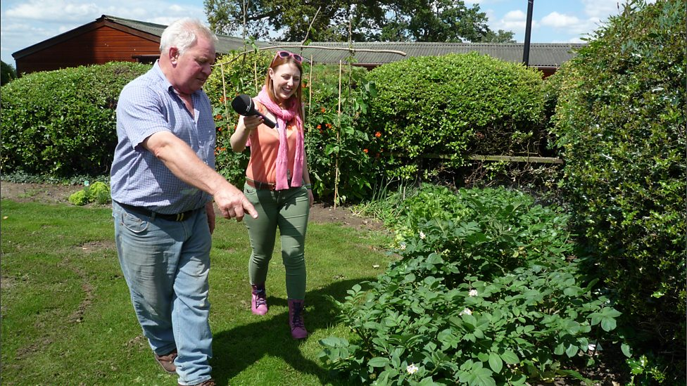 BBC Radio Norfolk - Chris shows off his vegetable patch - The Garden ...