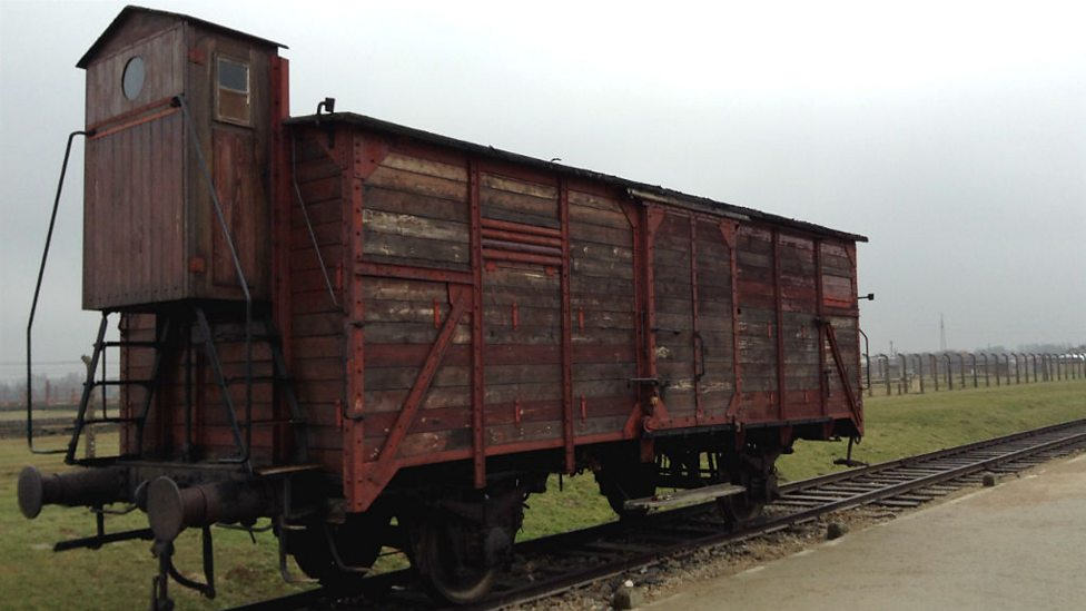 Image result for auschwitz train
