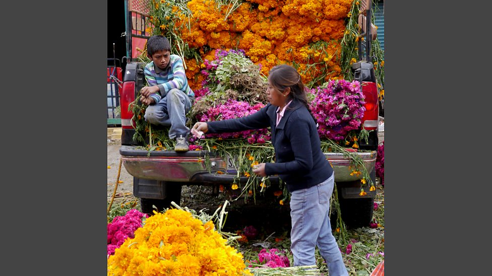 Marigolds for sale at the Central de Abastos in Mexico City