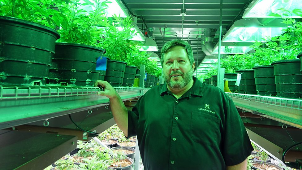 BBC World Service - Global Business, Colorado's Big Marijuana