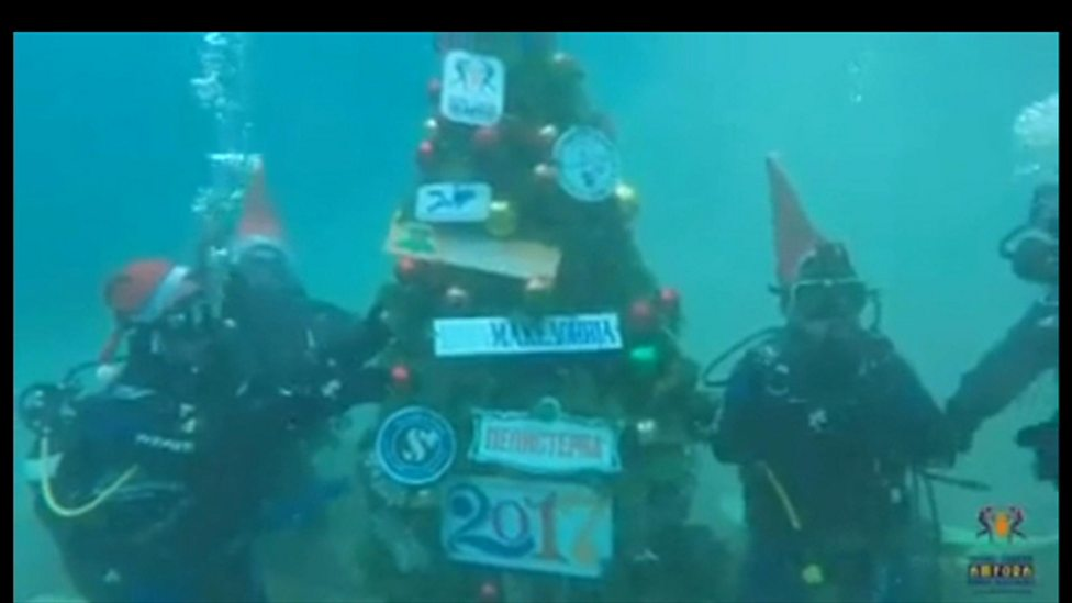 Divers Add Finishing Touches To Underwater Christmas Tree Cbbc