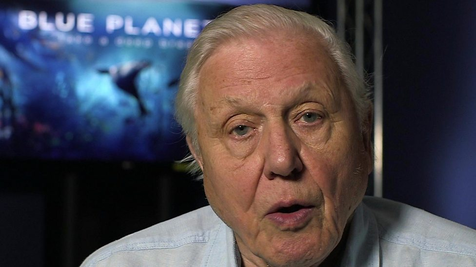 Attenborough 'astonished' by Blue Planet impact