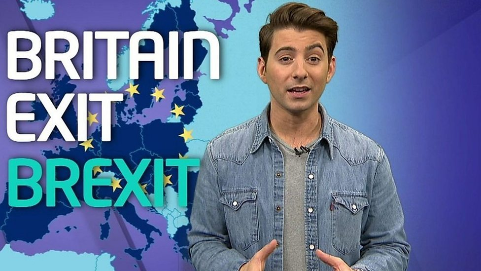 Brexit dictionary: What do the words mean?