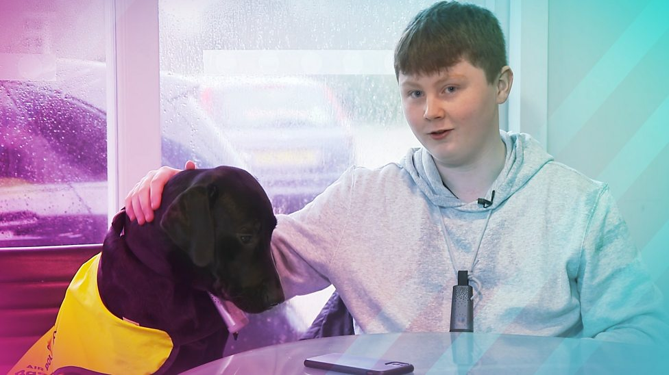 One boy and his dog fight against air pollution
