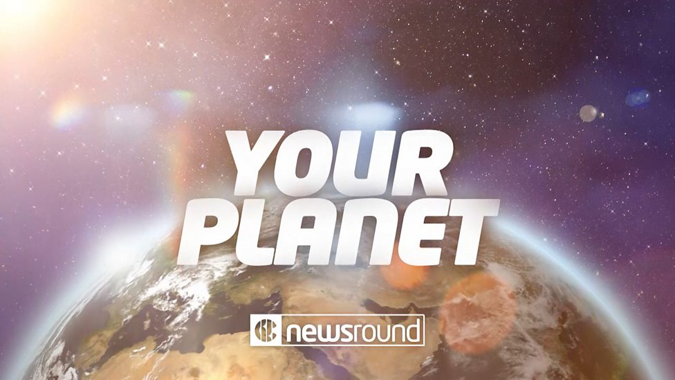 Your Planet :This week's news about the environment