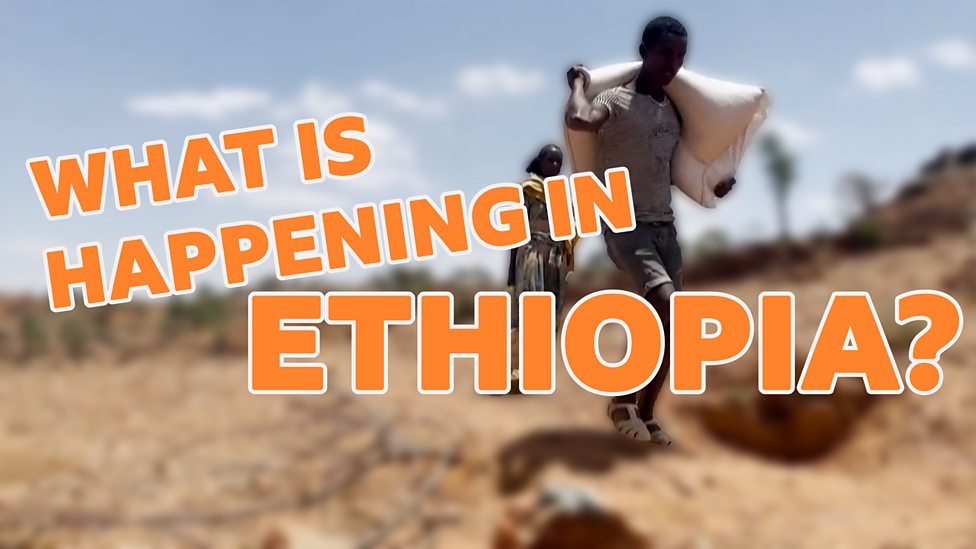 Ethiopia: Why are millions at risk of going hungry in Tigray?
