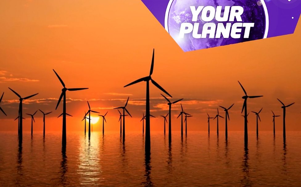 Your Planet: Nature and the environment