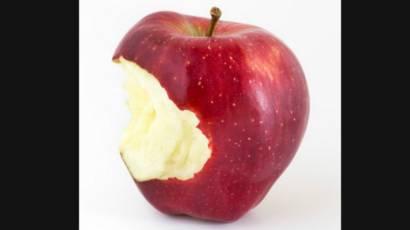 segun la biblia cual fue la fruta prohibida
