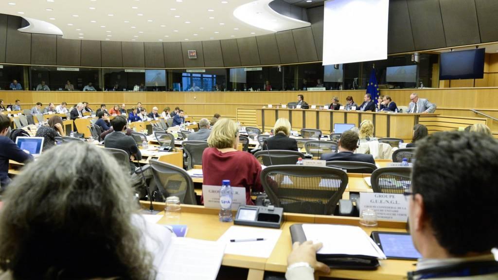 European Parliament committee