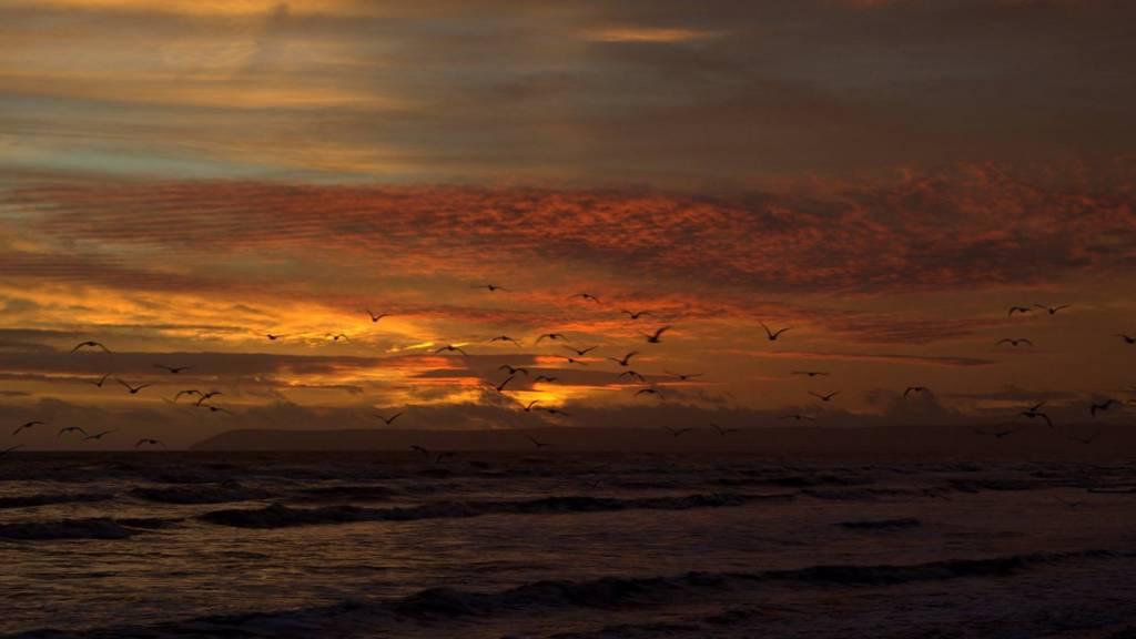 Bexhill sunset