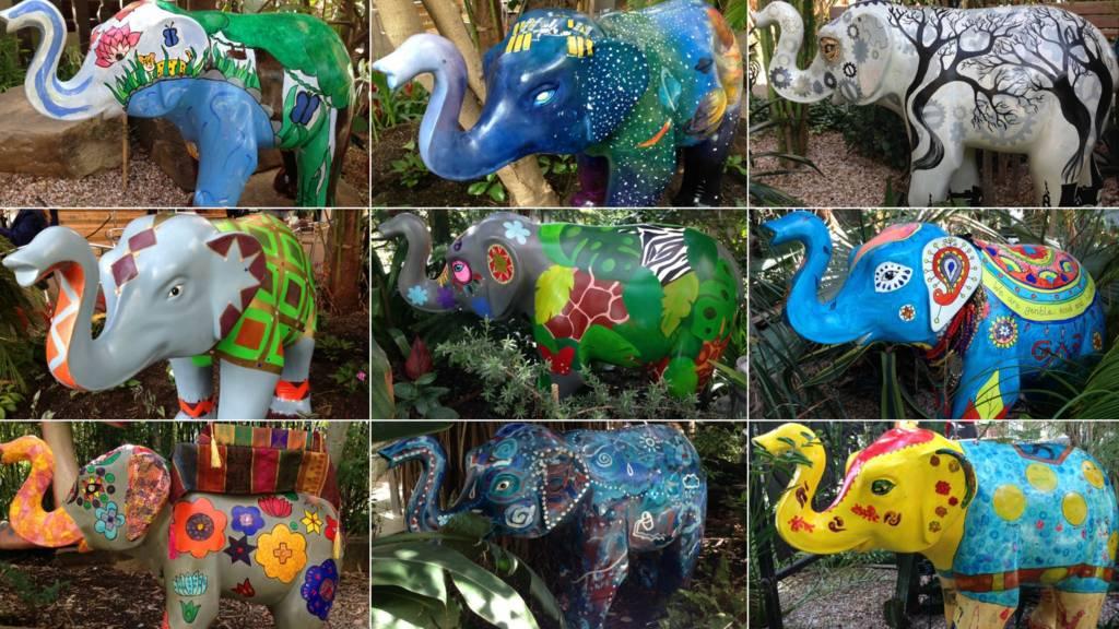 Sheffield elephants
