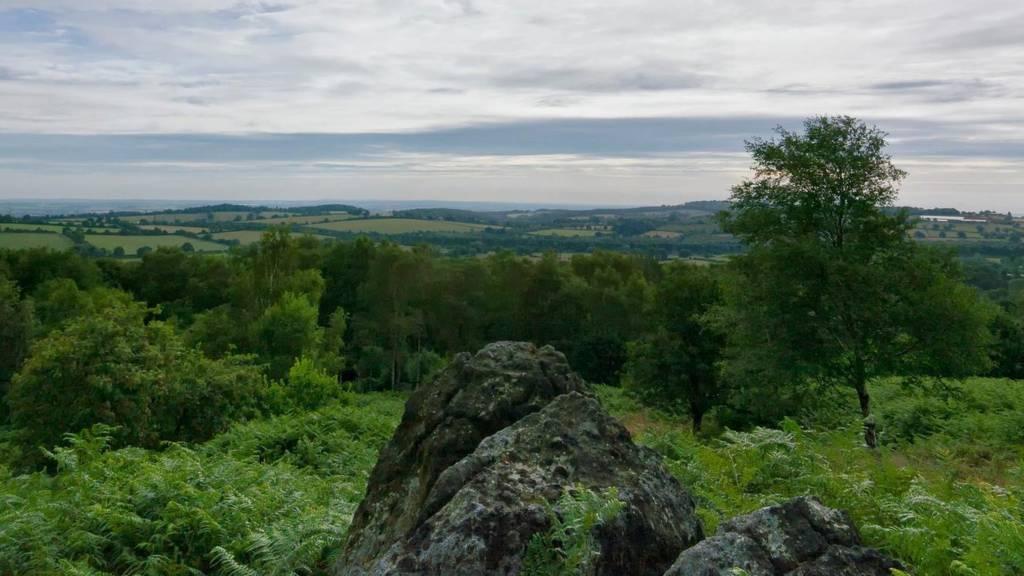 Charnwood Sky