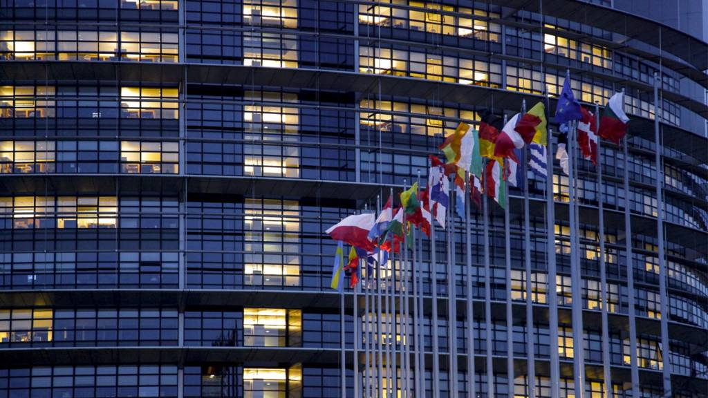 Flags outside the Strasbourg Parliament building