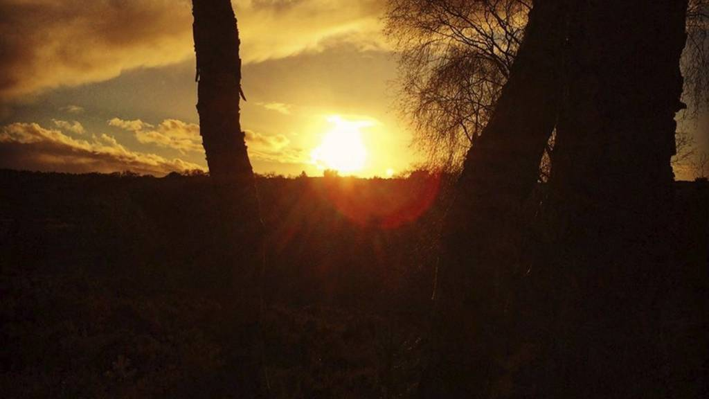 Sun over Cannock Chase