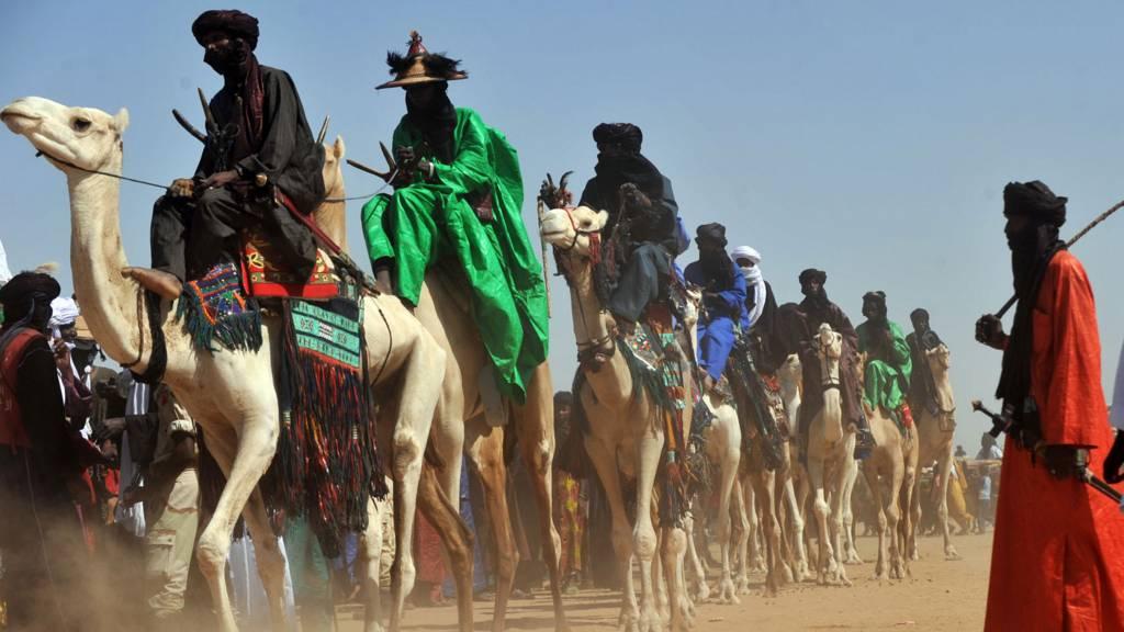 Camels in Niger