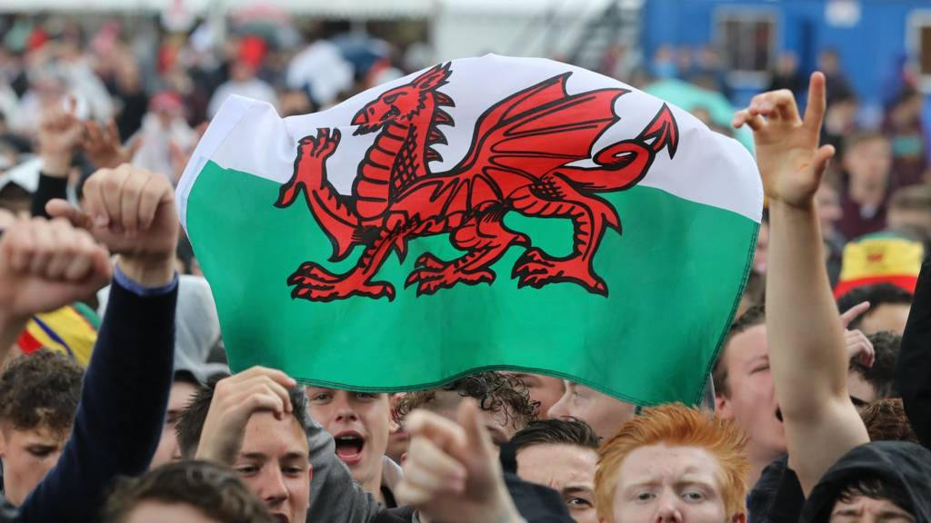 Wales fans with a Welsh flag