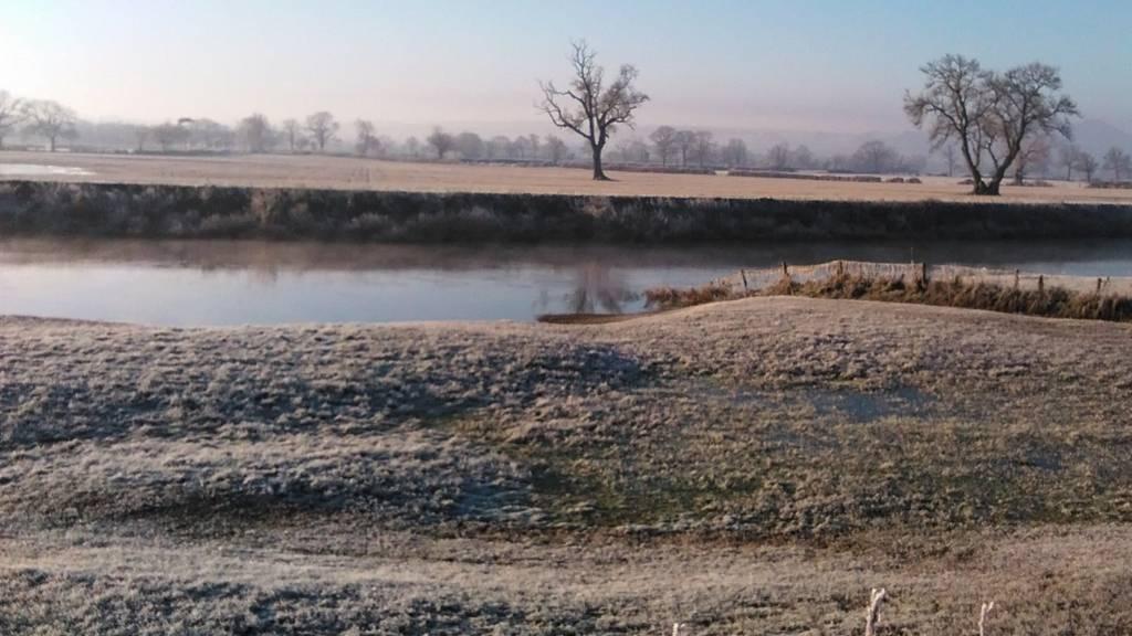 Frosty Edgerley