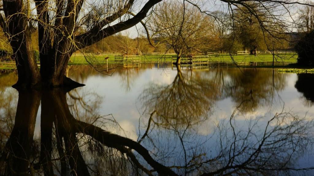 Flooded Shugborough