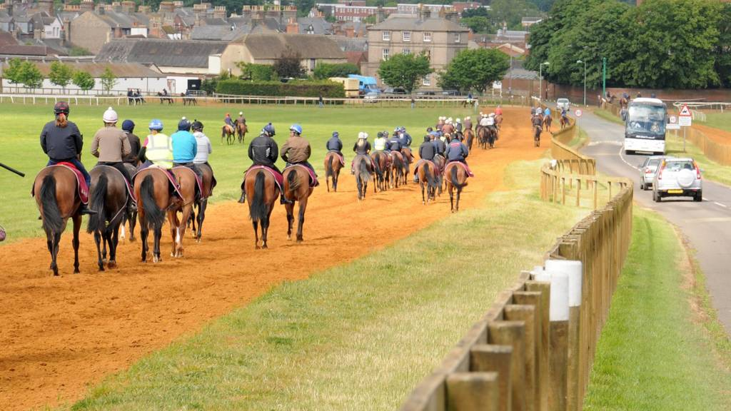 Horses on bridleways in Newmarket