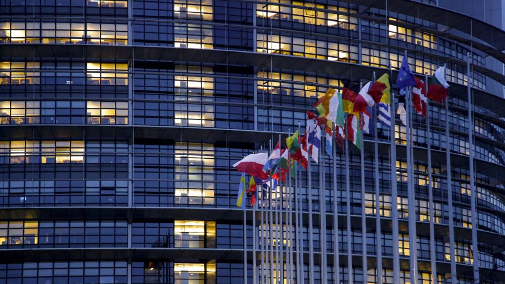 Flags outside the Strasbourg Parliament building at night