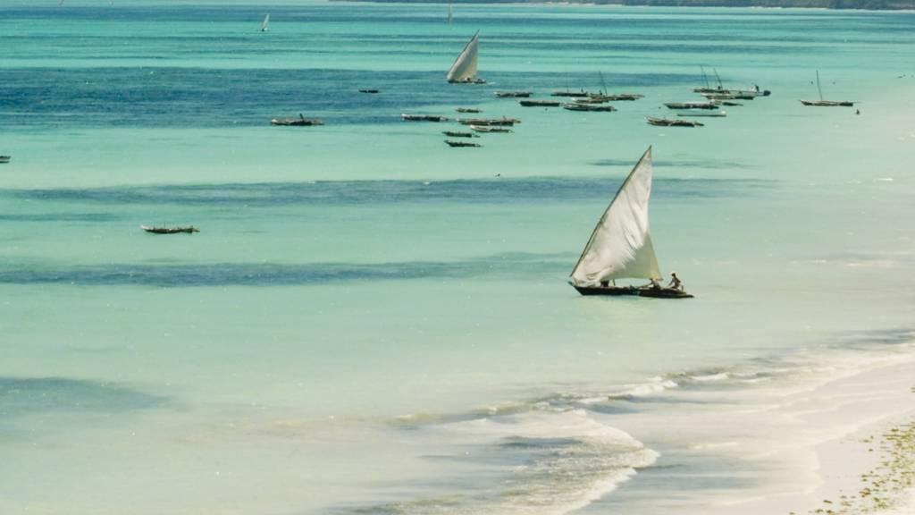 Beach off Zanzibar, Tanzania