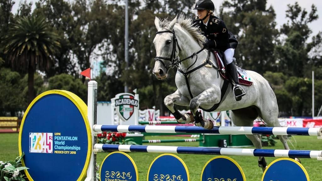 Equestrian Showjumping