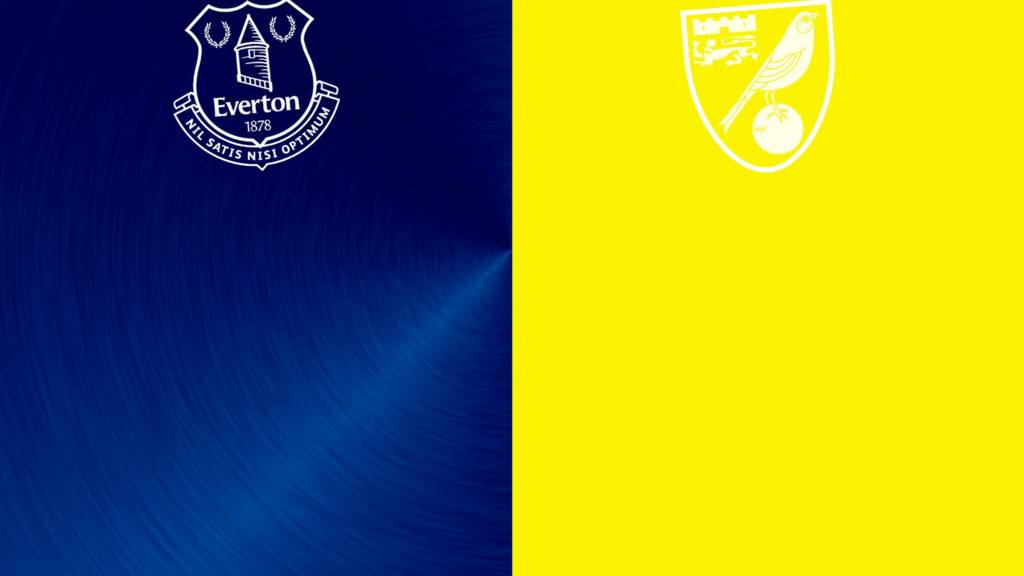 Everton v Norwich badges