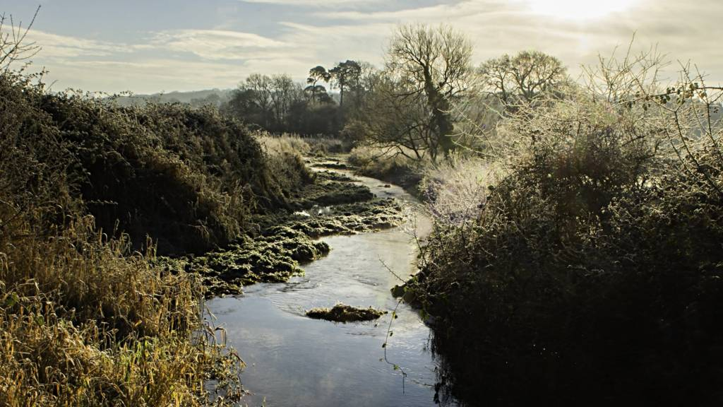 A frosty River Pang in Berkshire