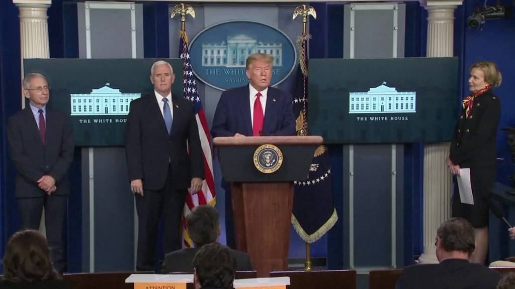 President Trump gives a briefing at the White House