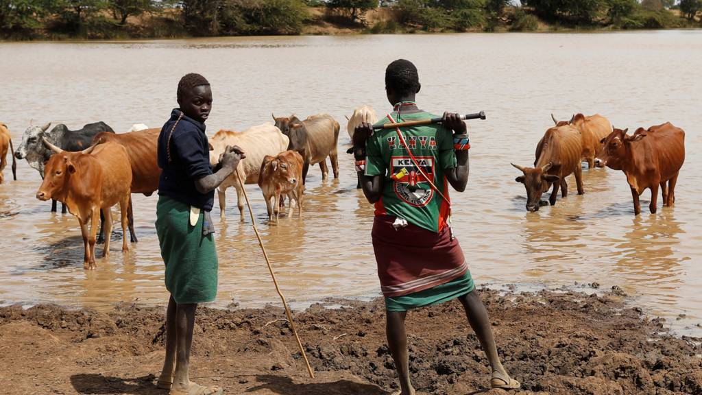 Kenyans with their cattle at a watering hole