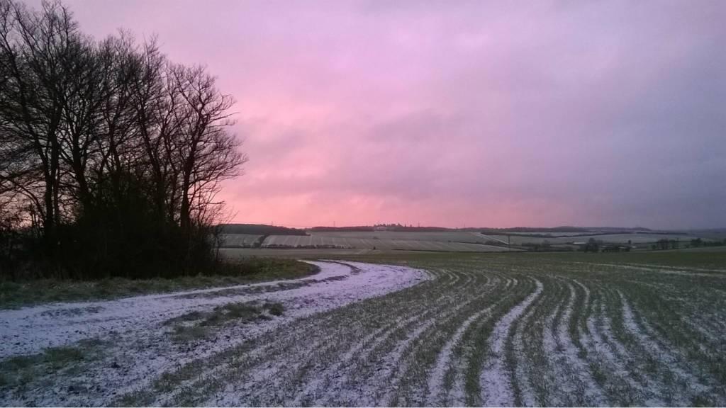 Field near Cambridge
