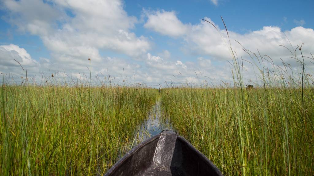 Exploring the canals of the Okavango Delta in Botswana aboard a Mokoro (traditional canoe)