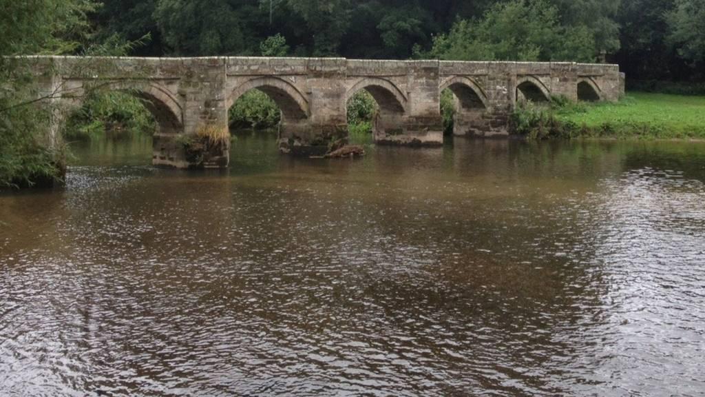 Essex Bridge, Shugborough