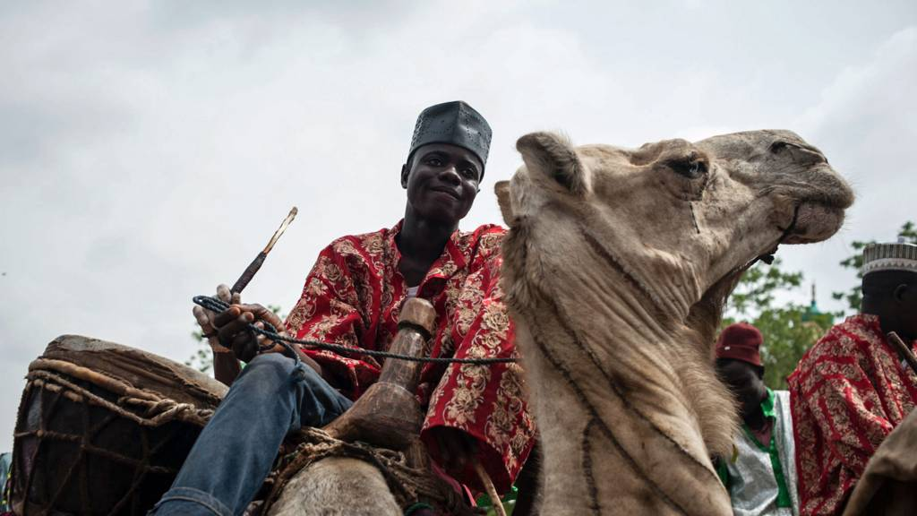 A man on a camel in Kano, northern Nigeria