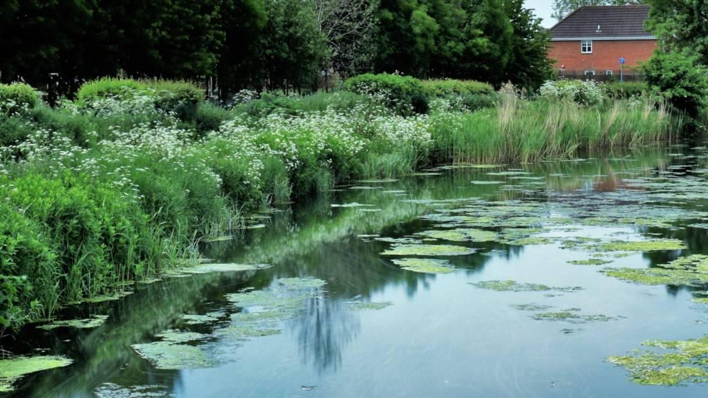 Nottingham river scene