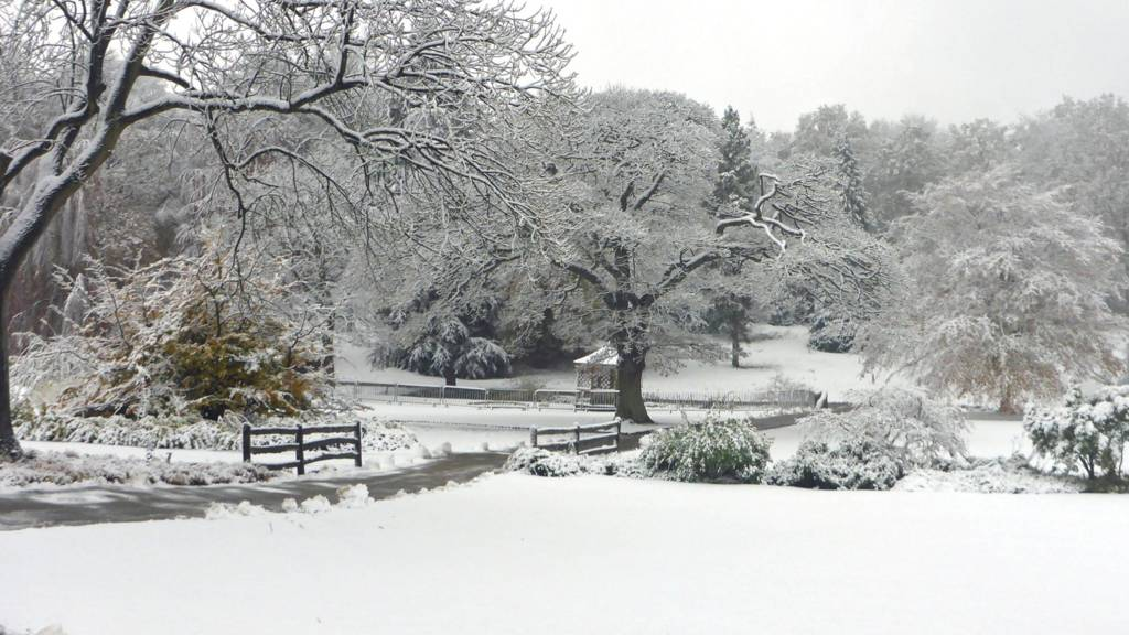 Snow at Harlow Carr Gardens