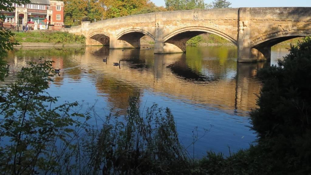 Abbey Park Leicester, autumn