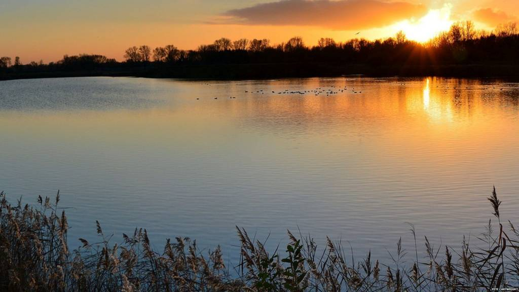 Sunset and ducks at Watermead Country Park