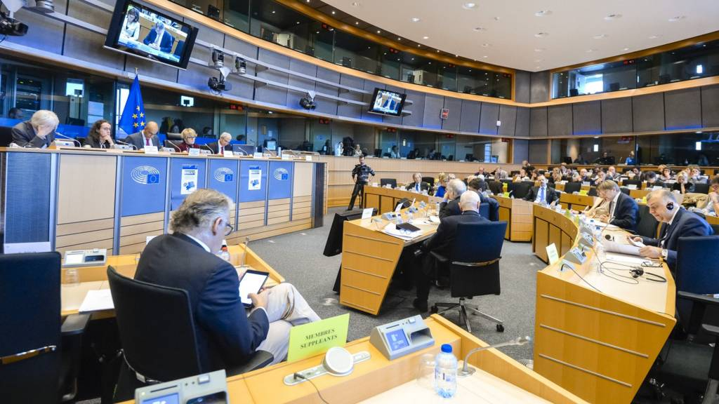 Constitutional Affairs Committee at the European Parliament