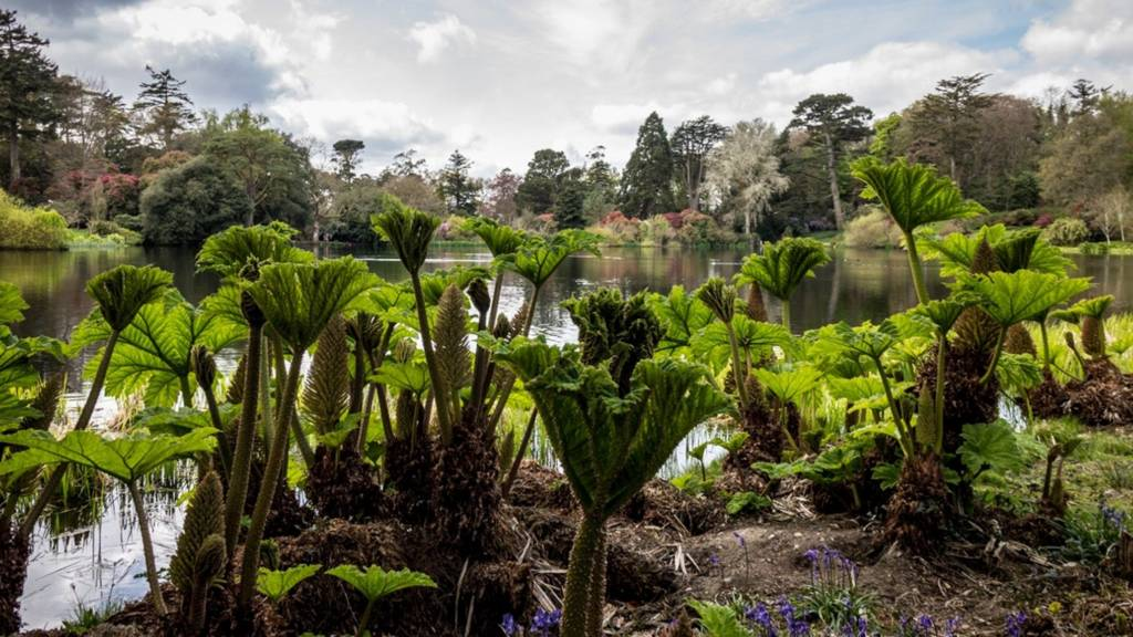Picture: Mount Stewart, County Down (by Morris Duncan)