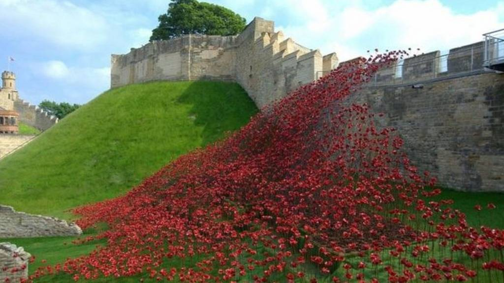 Lincoln poppies