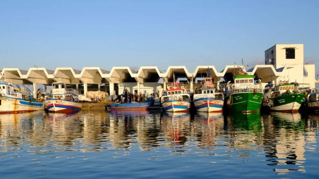The Kelibia harbour in Tunisia