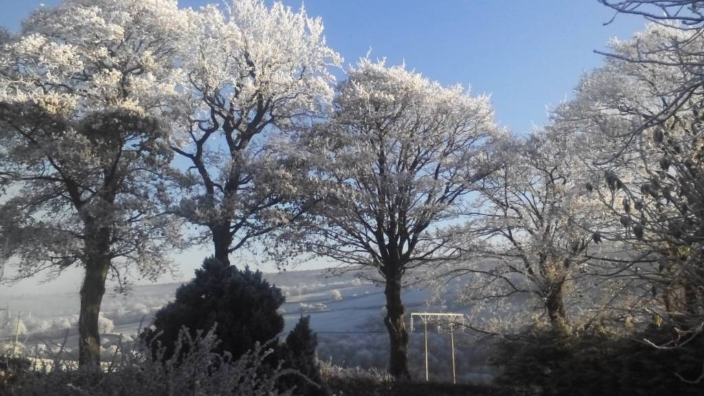 Derry frost
