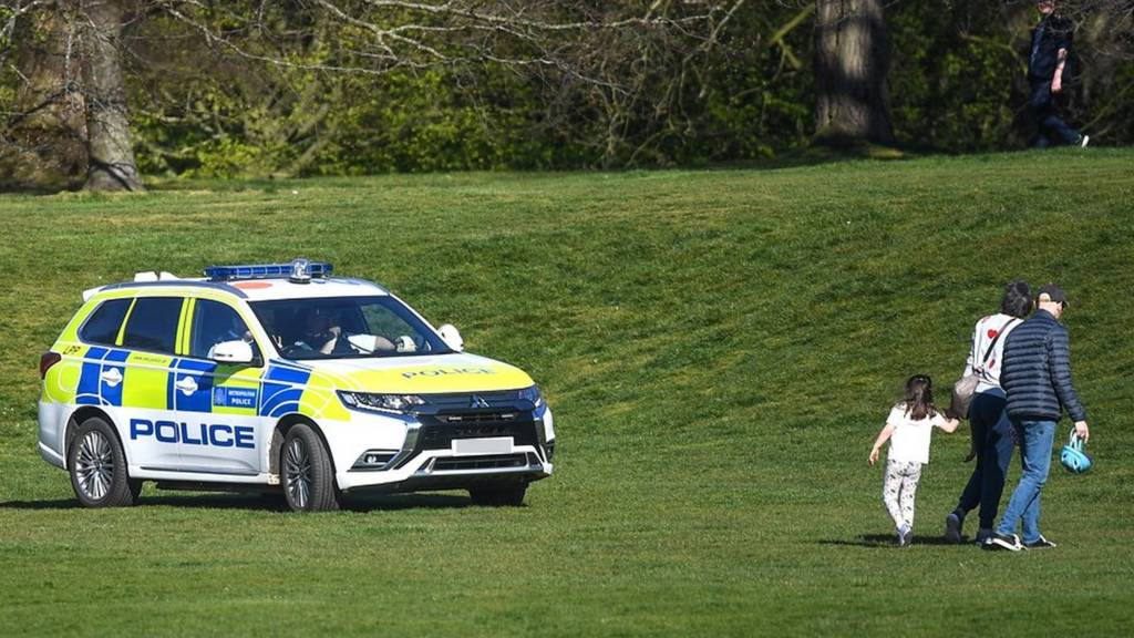 Police car in park