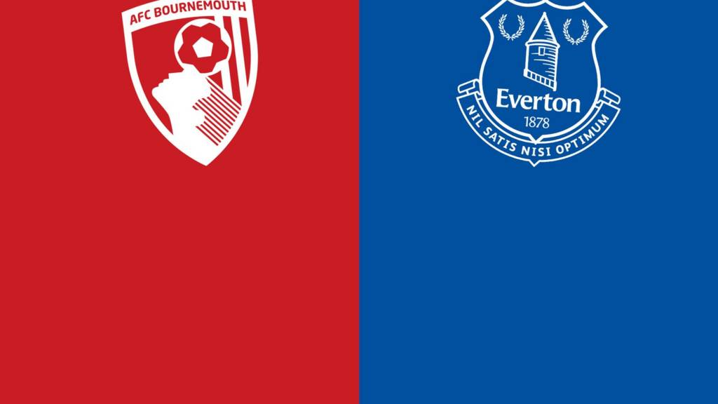 Image result for Bournemouth vs Everton